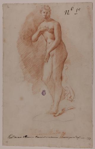 Estudio de la Venus Medicis