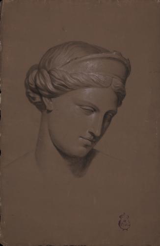 Estudio de la cabeza de la Afrodita de Capua