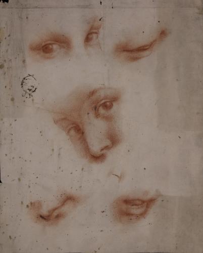 Estudio de ojos boca y cara