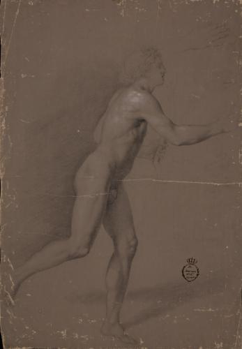 Estudio de Apolo corriendo con arco y mano derecha