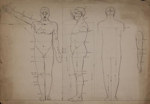 Estudio de proporción anatómica de figura masculina de frente, perfil y de espaldas