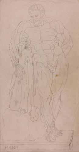 Estudio anatómico frontal del Hércules Farnese