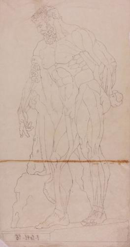 Estudio anatómico de perfil del Hércules Farnese