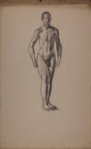 Estudio de modelo masculino desnudo de pie de frente