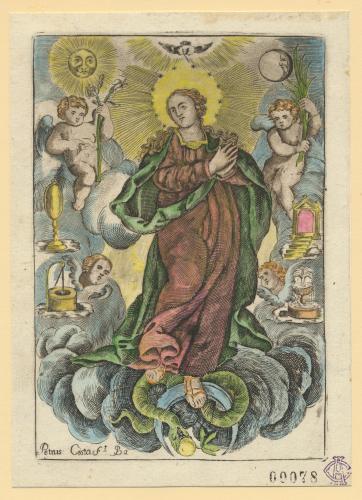 [La Inmaculada Concepción]