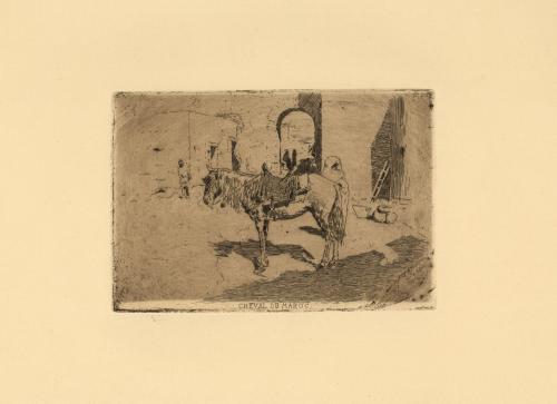 Cheval du Maroc [Caballo de Marruecos]